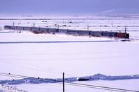 一面の雪景色を赤い機関車と青い客車が駆け抜ける- 1984年・奥羽本線 - - ねこの撮った汽車