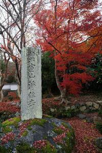 2020京都の紅葉・上桂浄住寺 - デジタルな鍛冶屋の写真歩記