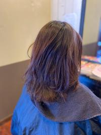 大人の広がる髪に、リノヴィールがいい、、、! - 観音寺市 美容室 accha