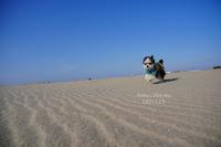 続・Chipo*の自由時間♪ - FUNKY'S BLUE SKY