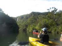 西表島水林旅行3. 2日目カヌーとトレッキングでピナイサーラの滝へ - 鴎庵