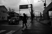 この直前、猛烈な霰に見舞われたが、寒さは思ったほどではない20210219 - Yoshi-A の写真の楽しみ