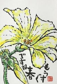 """p1407 """" 大黄花片喰 """" 松の川緑道2021年2月19日 - 侘び寂び"""
