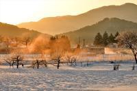 みちのく寒い朝9 - みちのくの大自然