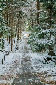 常照皇寺~雪景色 - 鏡花水月