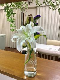 ムーンショッ○計画⭐️ - 新・感性☆日記