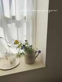 2月の花便 - tukikusa note
