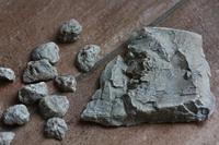 食虫植物のテラリウム用に石膏で小さな岩を作ってみました - フェルタート(R)・オフフープ(R)立体刺繍作家PieniSieniのブログ