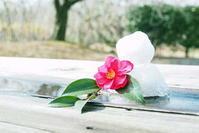 雪だるま - さぬき風花