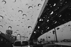 交差点の雨 -