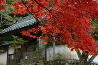 紅葉~少し早かった古刹 - katsuのヘタッピ風景