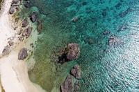 [沖縄]沖縄北部の海を空撮したら、鳥さんが一緒に飛んでくれた。 - 沖縄発-リーマン経営診断トラベラー ~俺流はこれだ~