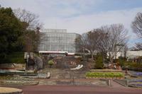 広島市植物公園@2021.02.13 - 酒とカメラと、ときどき猫