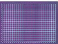 マスクサイズの掲示用にA4サイズ印刷640-480(300,600) - 写真で楽しんでます!