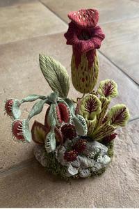 食虫植物のテラリウムが完成しました - フェルタート(R)・オフフープ(R)立体刺繍作家PieniSieniのブログ