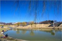 水温む公園 - muku3のフォトスケッチ