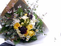 お母様のお誕生日に花束。「黄色のバラと、フリージアを入れてナチュラル系」と、ワンちゃんのご命日にミニアレンジメント。「元気な感じ」。西8にお届け。2021/02/18。 - 札幌 花屋 meLL flowers