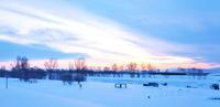 雪の河岸に水鳥が戻って来た2021/02/22 - 今朝の一枚 石狩川の朝