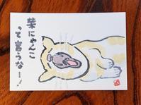 猫の日の絵手紙 - ご無沙汰写真館