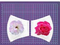資生堂の薔薇 - 写真で楽しんでます!