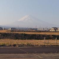 霞んでた富士山&今日のわんこなど - 白い羽☆彡の静岡県東部情報発信・・・PiPiPi♪