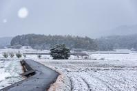雪景色 - toshi の ならはまほろば