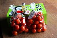 山椒トマト「2021」の販売をはじめます。 - 奥田トマト農園通信 (ロング版)
