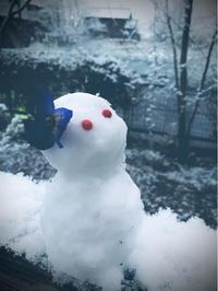 * 雪の日の伝言 - わたしの時間