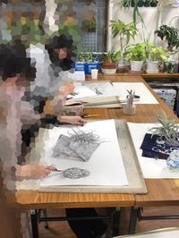 名芸、造形、学芸大学、今年も合格率100%でした。 - 大﨑造形絵画教室のブログ