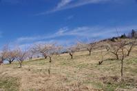 吉野郡下市町 - ぶらり記録 2:奈良・大阪・・・