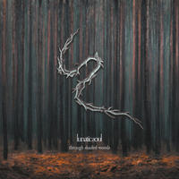 """Lunatic Soul 7th """"Through Shaded Woods"""" - Hepatic Disorder"""