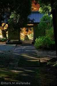 秋色が似合う楼門 - Mark.M.Watanabeの熊本撮影紀行