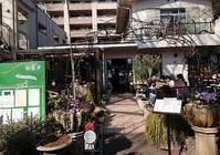 練馬区の花屋さん巡り - jujuの日々