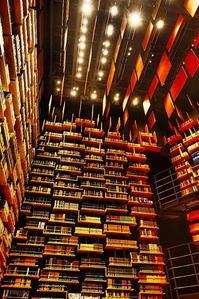 本の宮殿 - 風の香に誘われて 風景のふぉと缶