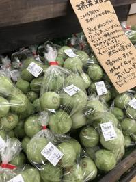 大洗まいわい市場摘果メロン入荷しました♪ - わいわいまいわい-大洗まいわい市場公式ブログ