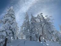 天元台高原スキー場絶景❣️ - 漁師です・・・