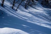 陽射し - 松之山の四季2