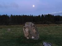 クリスタルボウルとシーの世界 - イギリス ウェールズの自然なくらし