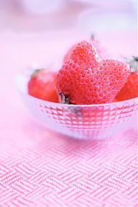 苺♪ - jumhina biyori*
