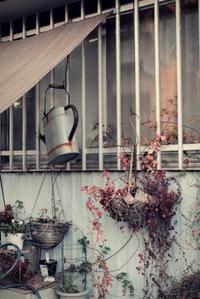 flower shop - IL EST TROP TARD 時は過ぎゆく ... 2