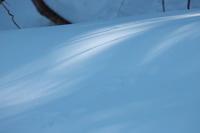 2月の雪#3 - 但馬・写真日和