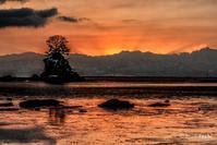 夜明けの雨晴海岸 - toshi の ならはまほろば