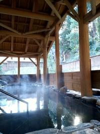 再び熊野 その二 湯の口荘 - 月下逍遥