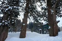 今年は雪が多い - Ryu Aida's Photo