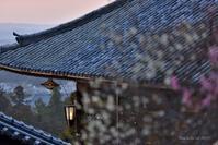 もう一つの菱燈籠のある夕刻@ 1270回 修二会-2&修二会Live配信とTV放映 - 東大寺が大好き