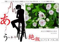 【うっかり絶版】写真とことばの本『あなたの物語をはじめる』Maki SAEGUSA - maki+saegusa