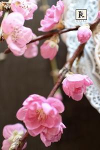 お家にお花を飾る」3月ー春色ピンクの花たちー - Bouquets_ryoko