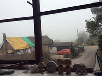 コロナDay352 - 続・紅茶国C村の日々