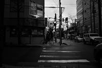 冷たい雨が春を呼ぶ20210219 - Yoshi-A の写真の楽しみ