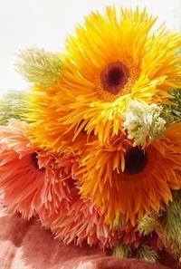 大人気!数秘&カラー🄬とお花のコラボ - お花に囲まれて